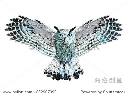 猫头鹰插图/猫头鹰类似水彩画的图形/ t恤图形 - 动物