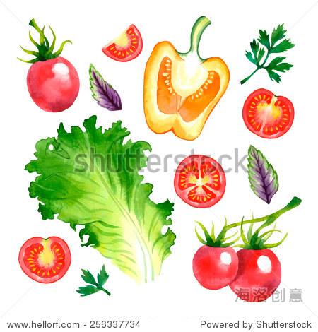 水彩矢量蔬菜与樱桃番茄