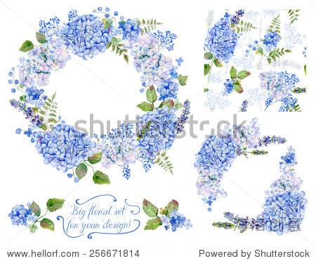 设置不同的内容,青色绣球花、熏衣草、醋栗、学v内容平面设计注意哪些蓝色图片