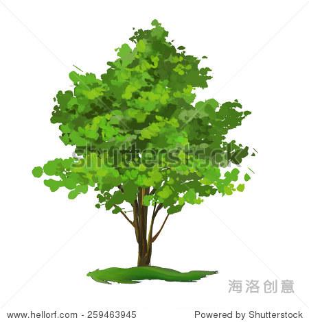 树矢量手绘插图画水彩