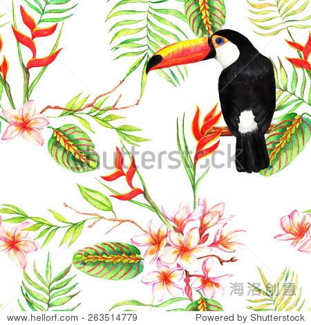 手绘水彩无缝模式与热带充满异域风情的花朵plumeria