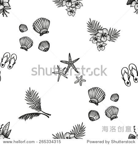 手绘黑白画花,触发器,棕榈,明星,贝壳装饰物品.组孤立
