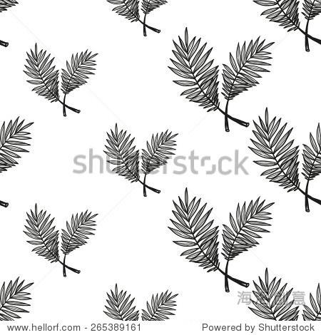 手绘黑白画棕榈装饰物品.组孤立海夏天异国情调的海滩