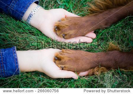 狗爪子按在一个女人的手 - 动物/野生生物,人物 - ,,.