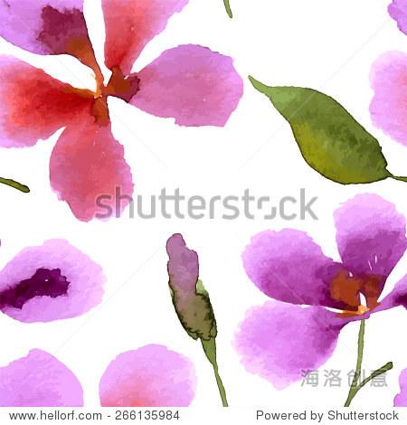 插图和兰花.水彩.手绘.