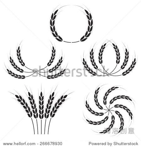 小麦简笔画步骤