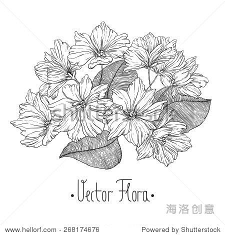 黑白单色手绘抽象花朵和叶子在复古风格——数字艺术作品——向量和手