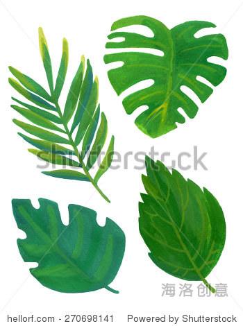 手绘树叶在水彩插图.