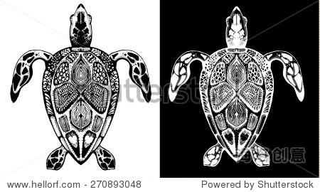 矢量线条画乌龟的黑白风格.集