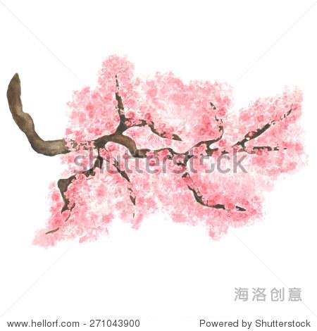粉色素描樱桃树与花孤立在白色