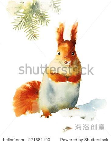 水彩松鼠坐在雪——手绘插图的动物孤立在白色背景