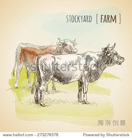 向量水彩速写放牧的奶牛.古董 - 动物/野生生物,复古