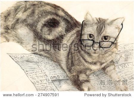 美国猫短头发戴眼镜和阅读报纸.聪明,可爱的猫想要通知.铅笔绘图.