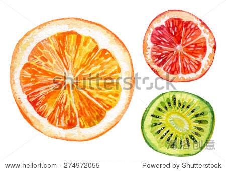 水彩的新鲜橙,猕猴桃和柚子.手绘插图