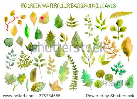 水彩树叶收集不同的设计