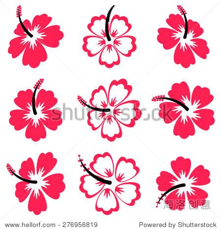 漂亮的黑色和红色向量芙蓉花孤立