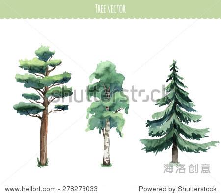 水彩的树木.桦木,松树,杉树.向量