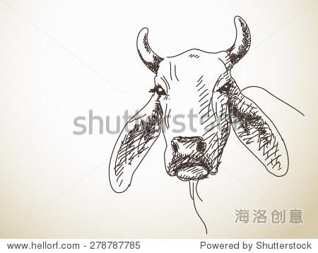 素描的长耳朵牛孤立的矢量图