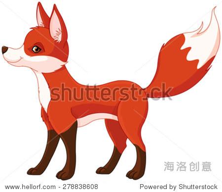 非常可爱的红狐狸