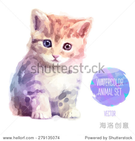 壁纸 动物 猫 猫咪 小猫 桌面 450_470