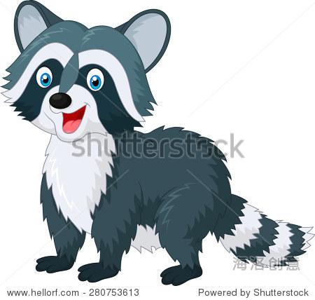 卡通可爱的浣熊在白色背景上