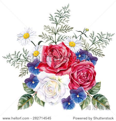 大束玫瑰,紫罗兰和洋甘菊.手绘,水彩矢量插图