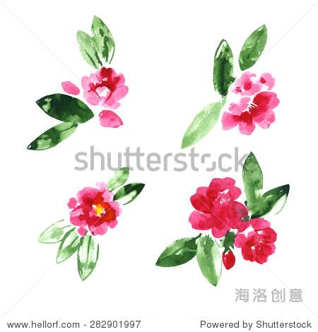 组红色水彩山茶花朵