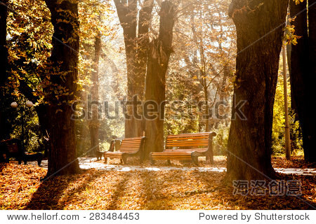 公园长凳上在秋天.秋天的风景