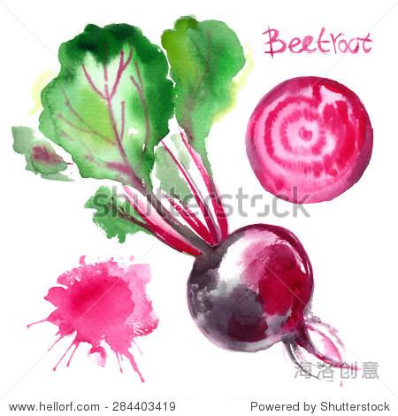 集蔬菜画水彩画在白色背景.颜色与叶甜菜.水果,一半,叶,抽象模糊.