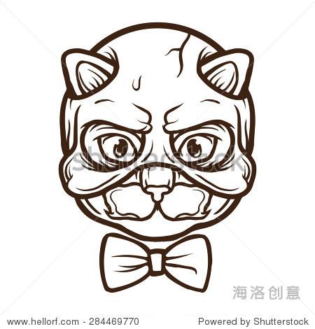 猫面具大纲说明 - 动物/野生生物 - 站酷海洛创意正版