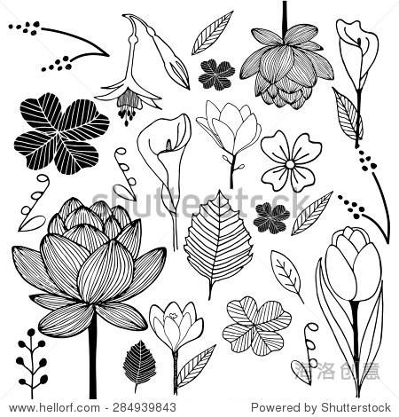 花和叶手绘草图涂鸦黑白插图设计元素