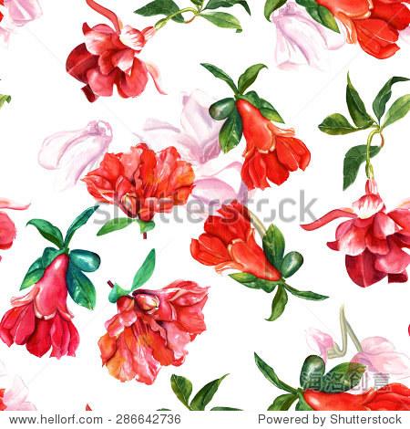 无缝的背景图案和樱红色石榴花,水彩绘画在白色背景上