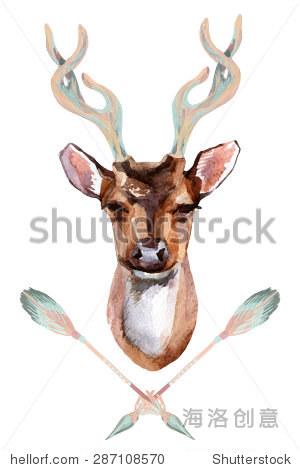 水彩与印度箭鹿头——前视图.手绘插图