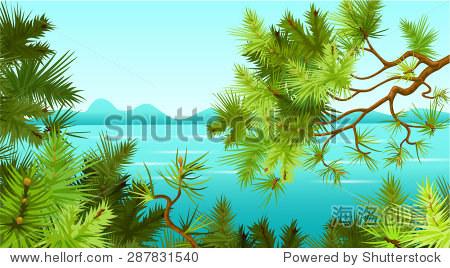 松树的背景.景观.