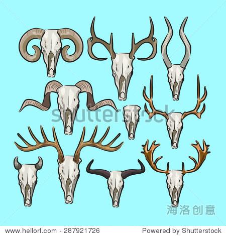 矢量平面动物角头骨