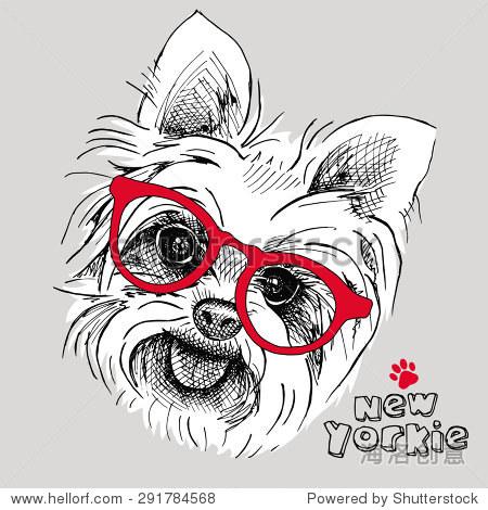 的照片戴眼镜狗约克郡犬的画像.矢量插图. - 动物