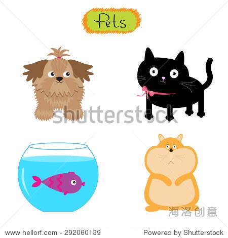 向量宠物插图孤立可爱的白色背景的猫,狗,鱼,仓鼠平面