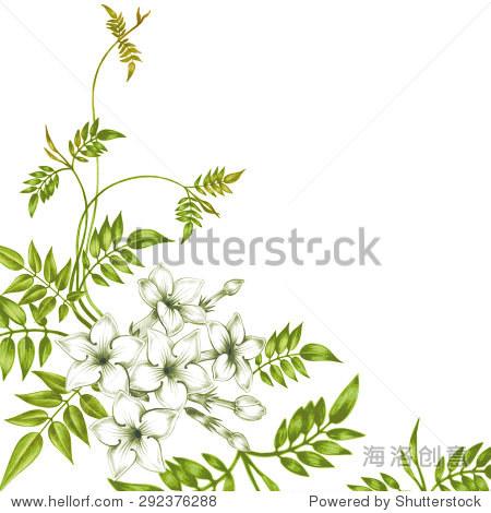 明信片和茉莉花孤立在白色背景.创建贺卡,婚礼请柬,祝贺你.向量.