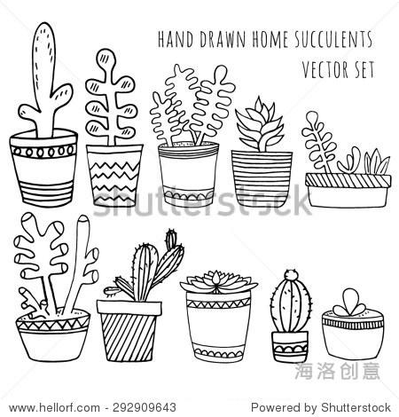 说明组手绘可爱的仙人掌和多汁的植物生长在可爱的锅.