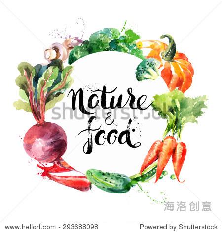 水彩手绘蔬菜.矢量图
