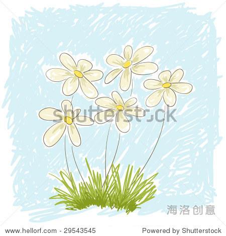 春天的雏菊.手绘矢量插图.所有元素分离层矢量文件.