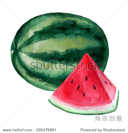 西瓜水彩手绘插图.有机食品的说明.