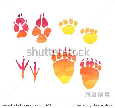动物的脚印,脚印,水彩插图