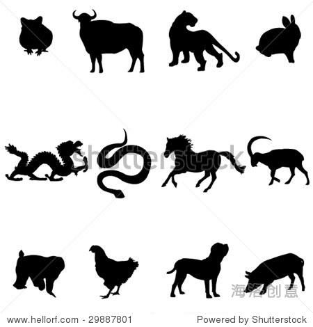 中国十二生肖的动物.