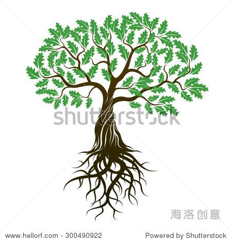 橡树与绿色的树叶和树根 矢量插图 自然,公园 户外 站酷海洛创意正版图片,视频,音乐素材交易平台 Shutterstock中国独家合作伙伴 站酷旗下品牌