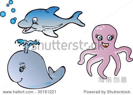 海洋动物-动物/野生生物