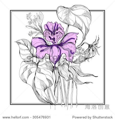 partialy彩色素描鲜花花束在坐标系