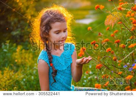 夏天女孩探索繁殖橙花在自然界探索女生户外区是照片日落图片