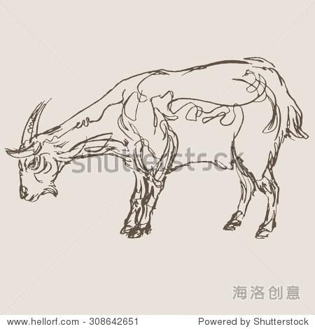 山羊手绘草图,向量 - 动物/野生生物,复古风格 - 站酷