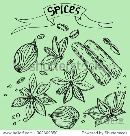手绘彩色香料素描集肉桂,豆蔻,咖啡豆和螺母兆亮绿色背景.